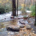 Flooded Campsite on Detweiler Run