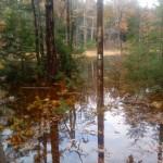 Flooding at John Wert Path