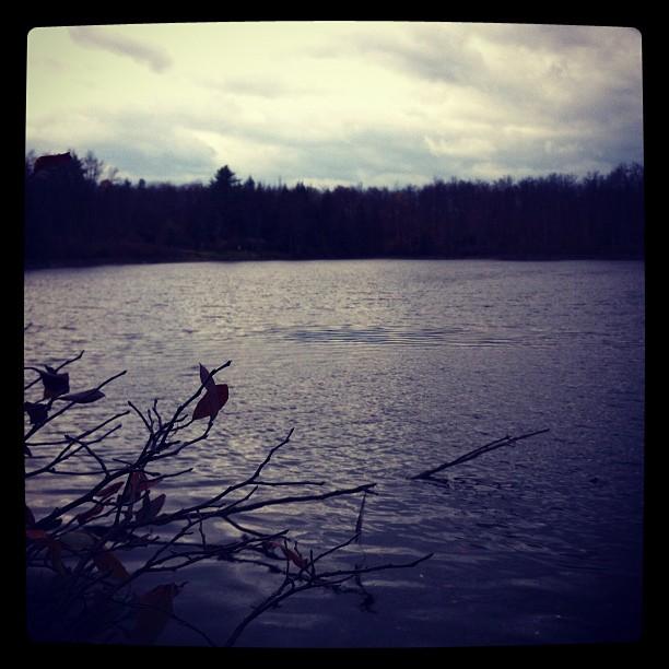 Soans Pond