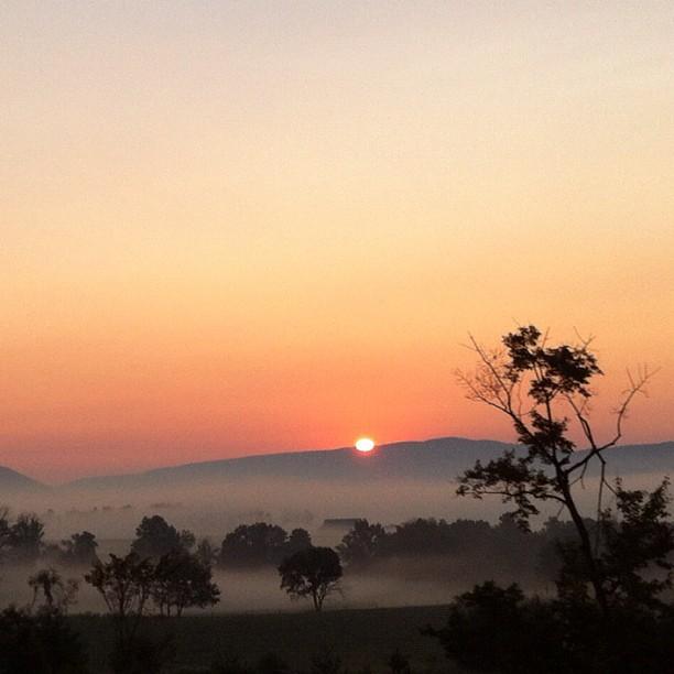 August Morning