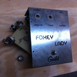 Guild's Foxey Lady