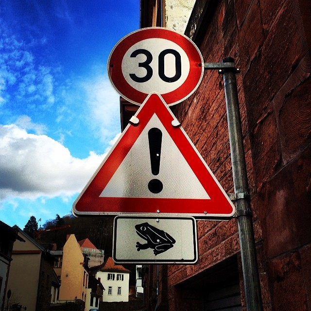 Warning: Frogs (Heidelberg, Germany)