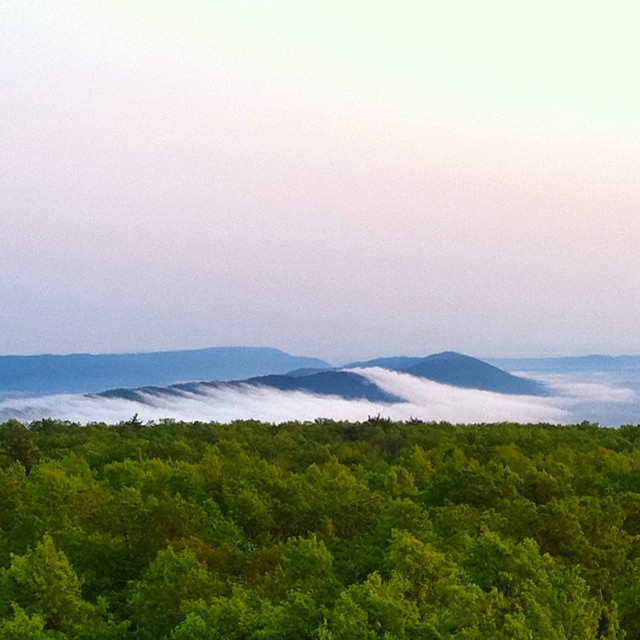View from Greenwood Fire Tower