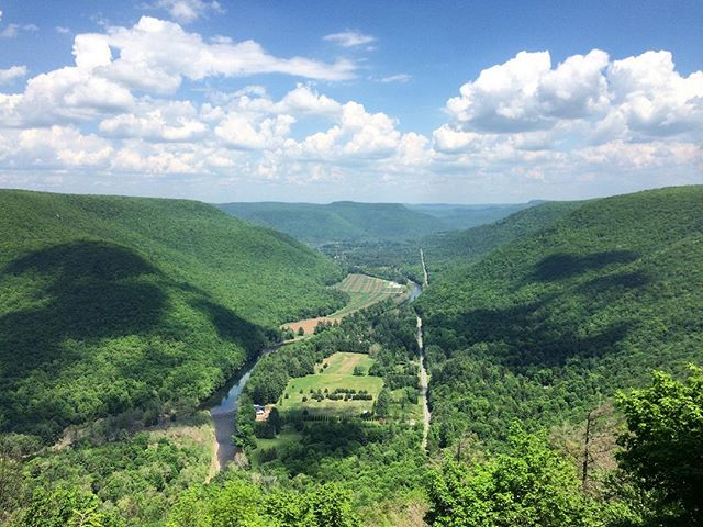 Loyalsock Creek from Smith's Knob